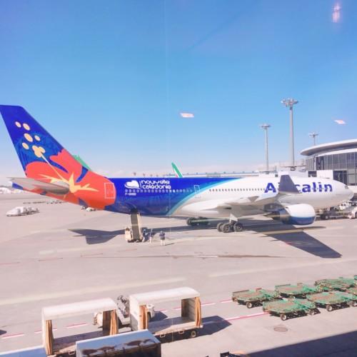 飛行機、エアカランの画像