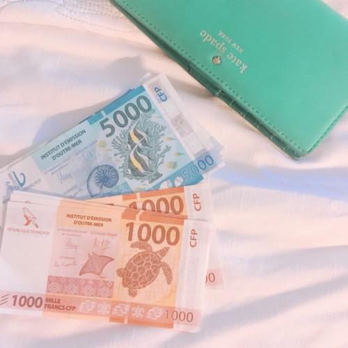 ニューカレドニアの通貨の画像