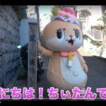 高知のゆるキャラ「ちぃたん」が可愛い♡失敗動画も面白い!