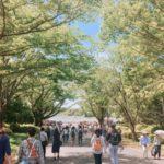昭和記念公園でピクニック!ゴールデンウィーク混雑状況・入園料は?